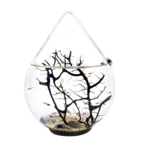 mini aquarium drop of life
