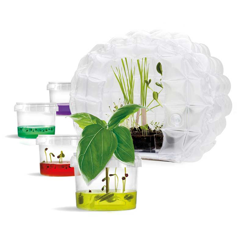 Inflatable mini greenhouse
