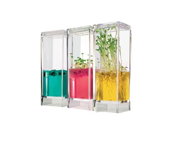Plantarium Garden Lab