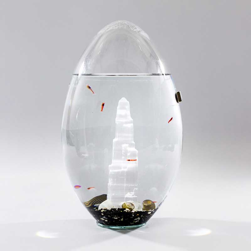 Beachworld mini acquarium Selenite
