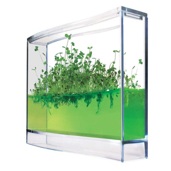 Plantarium super seeding in gel