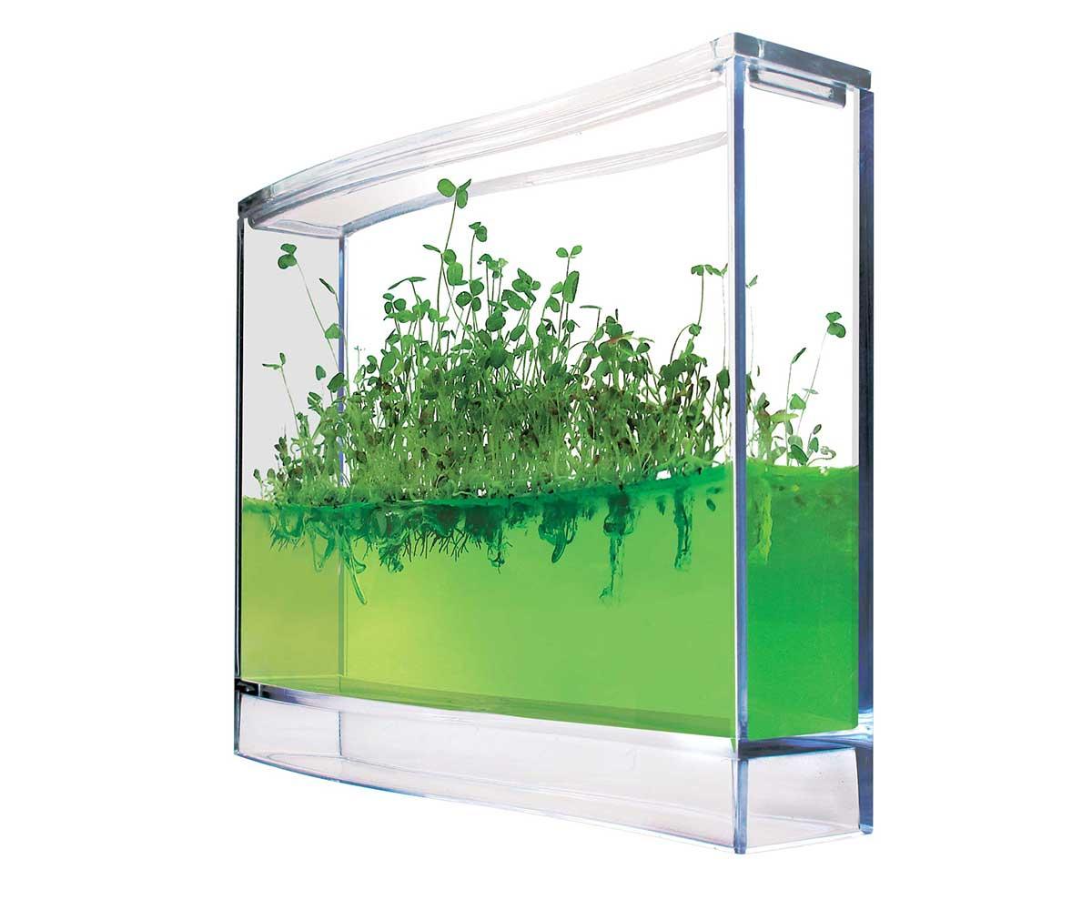 Plantarium super seeding in gel