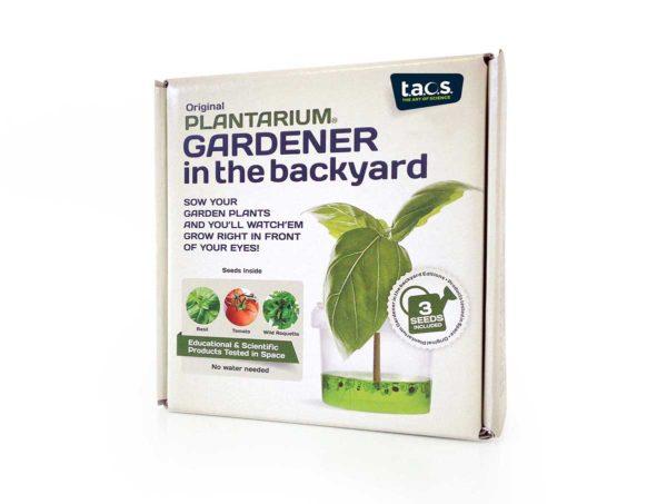 Vegetable plants Gardener