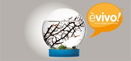 ecosistema fai da te
