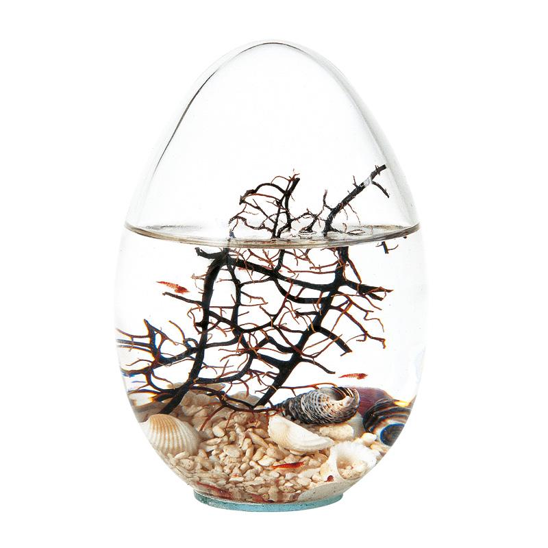 Beachworld mini aquarium Beachworld Ei-Form Gorgonie 16 cm