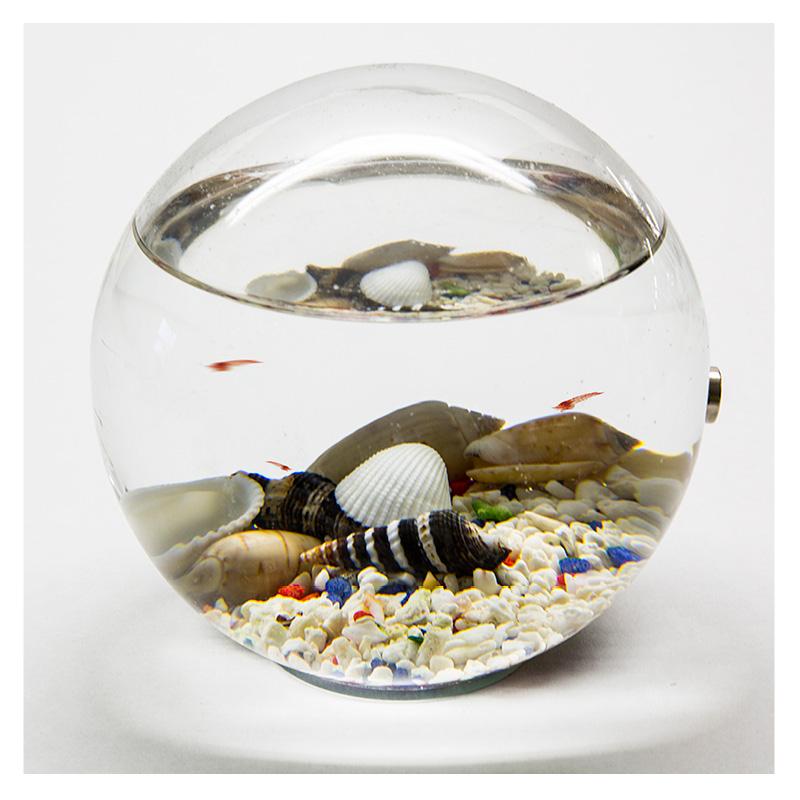 Beachworld ecosystem versiegeltes Aquarium Classic 12 cm